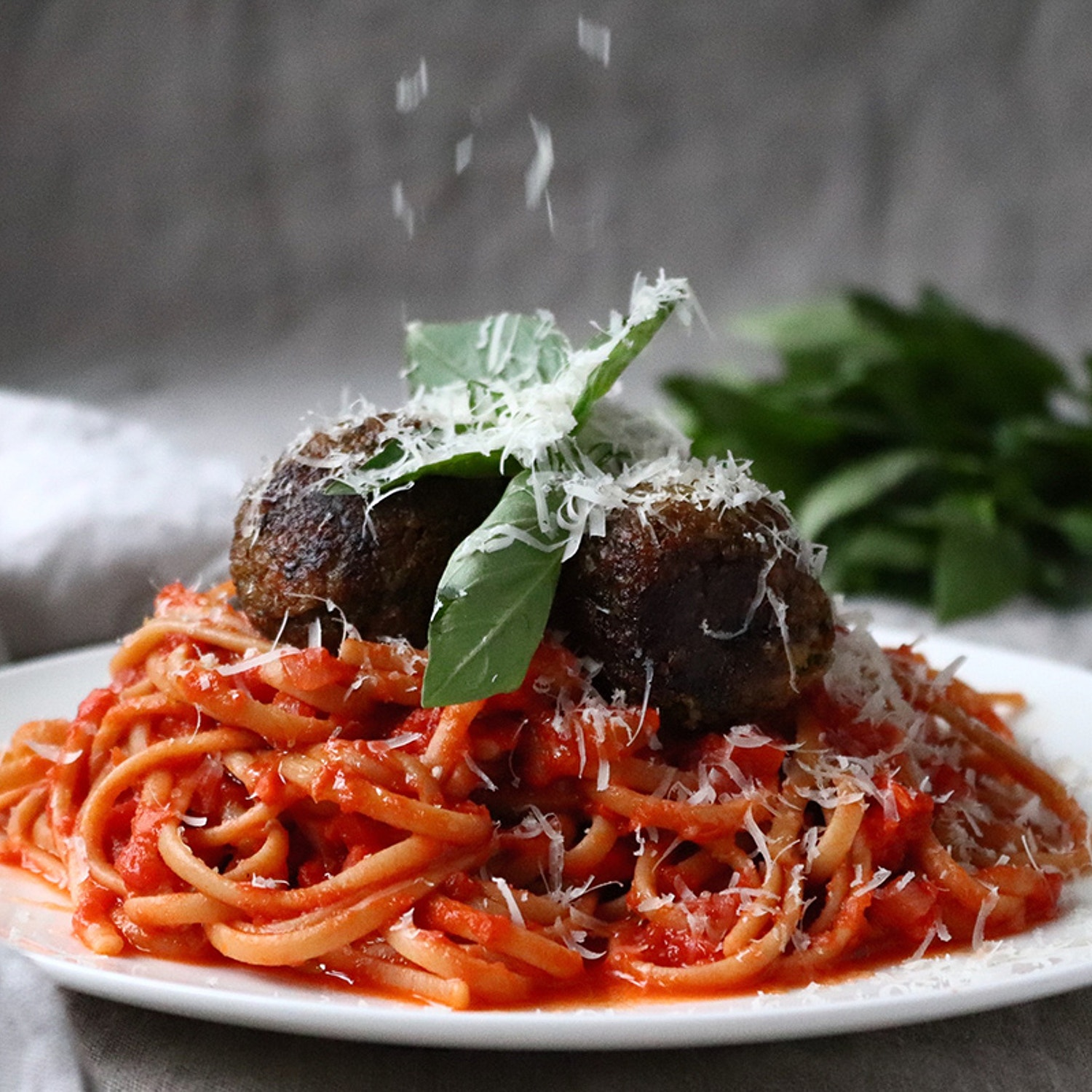 Spaghetti and Meatless Balls